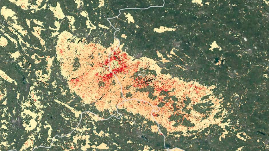 Waldbiomasse-Trend 2016-2020, hier für den Harz.