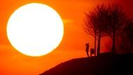 Die Erderwärmung wird drastische Auswirkungen haben, wenn der Mensch sie nicht stärker bremst als bisher.