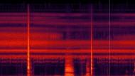 Frequenznischenbeispiel aus dem tropischen Regenwald in Afrika