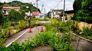 Die lauten Vögel von Fukushima