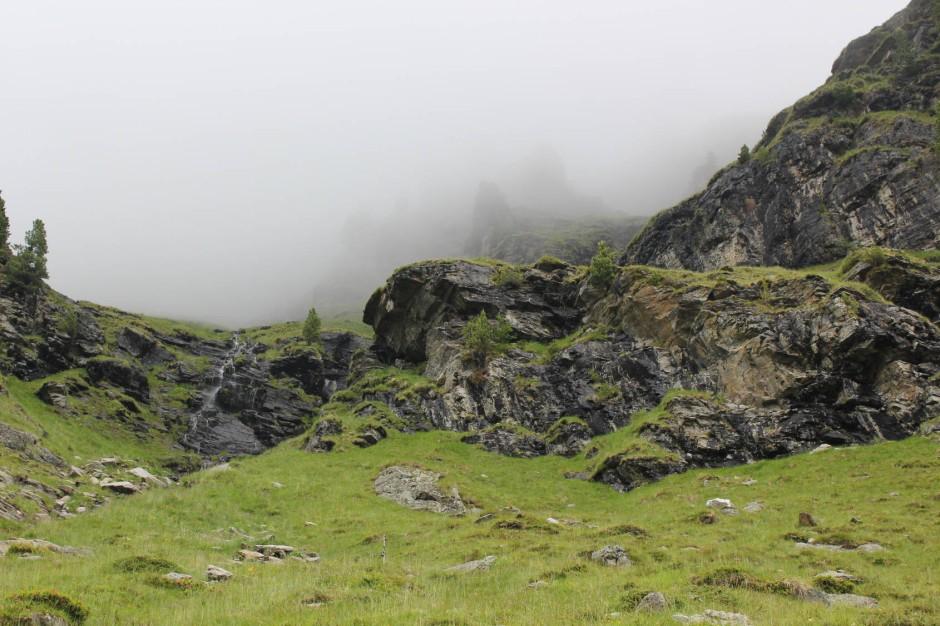 Neue Heimat Osttirol: Die Felswände des Debanttals beherbergen seit dem 23. Mai 2014 zwei Jungtiere.