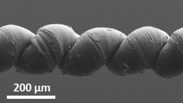 Nanomaterialien, Künstlicher Muskel: Natur und Wissenschaft, Physik und Chemie