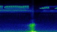 Spektrogrammvideo von vier unterschiedlich landwirtschaftlich genutzten Gebieten