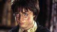 Kann sich nicht lange über den Stein der Weisen freuen: Harry Potter.