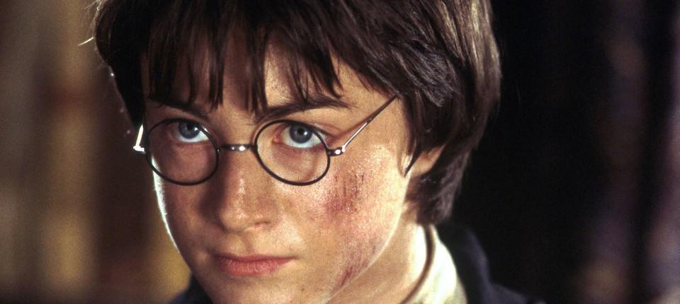 Zwanzig Jahre Harry Potter
