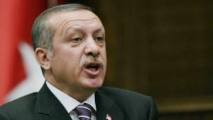 Kritik an Erdogans Ruf nach türkischen Gymnasien