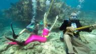 Unterwassermusik für Floridas Korallenriffe
