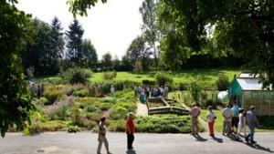 Rund 100.000 Besucher streifen durch Hessens Gärten