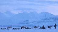 Echten Winter in Lappland erleben