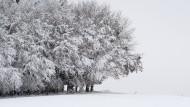 Minusgrade malen Winterlandschaft in Bayern