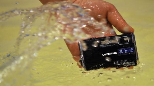 Unter Wasser, im Sand und im Regenwald