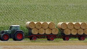 Das Bauerngeld ernten andere