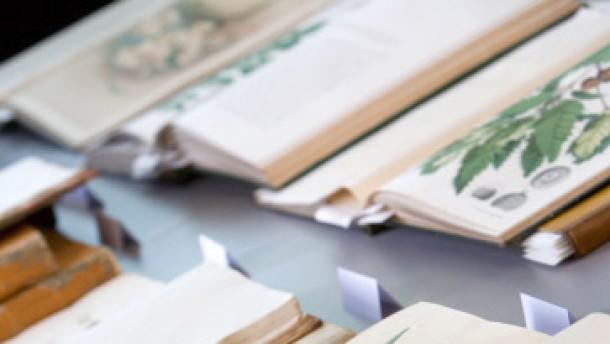 Botanischer Bücherschatz für Frankfurter Universität
