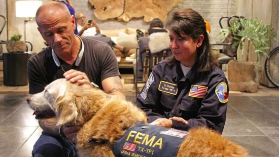 Letzter überlebender Rettungshund feiert 16. Geburtstag