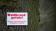 Höchste Waldbrandwarnstufe in Deutschland