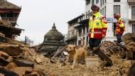Deutsche Helfer berichten über Rettungsarbeiten