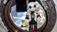 Weltrekorde für japanischen Roboter