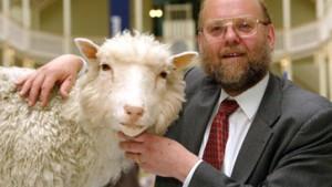 Museum in Edinburgh zeigt ausgestopftes Klon-Schaf Dolly