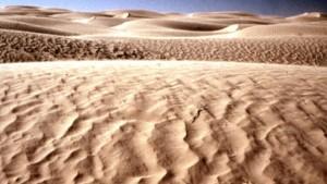 Alte Meister leben in der Wüste