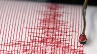 Das Seismogramm registriert auch die schwächsten Beben.