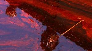 Schlimmer als Exxon Valdez