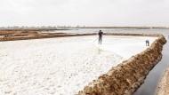Die letzten Salzbauern