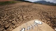 Schlimmste Dürre seit 80 Jahren
