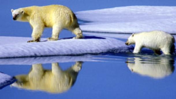 Wenn der Markt das Klima schützt