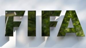 Nachfolger von Blatter gesucht