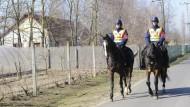 Kosovaren fliehen über serbisch-ungarische Grenze