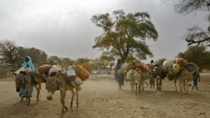 Fischer reist in den Sudan