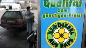 Biodiesel-Fonds ist nichts für Kleinanleger