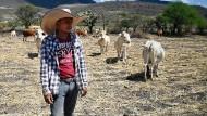 Dollar-Strom für Mexikaner droht zu versiegen