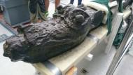 Einzigartige Galionsfigur im Meer vor Südschweden gefunden