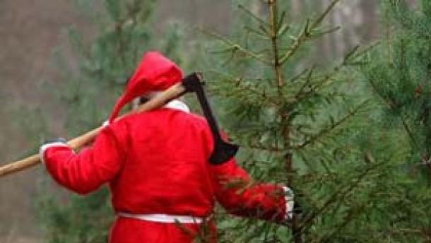 Häftlinge: Kein Anspruch auf Zellen-Weihnachtsbaum