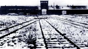 Literatur über den Holocaust