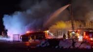 Feuer in Trainingsanlage für Rennpferde