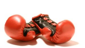 Die Soziologie des Kämpfens: Vom Hörsaal in den Ring