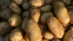 Die Geschichte der abgemeldeten Kartoffel