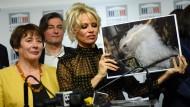 Pamela Anderson gegen Stopfleber