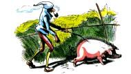 Biologische Kriegführung: Wie wir mit unseren Stretch-Säuen die islamistischen Terroristen aus ihren Dörfern jagen könnten.