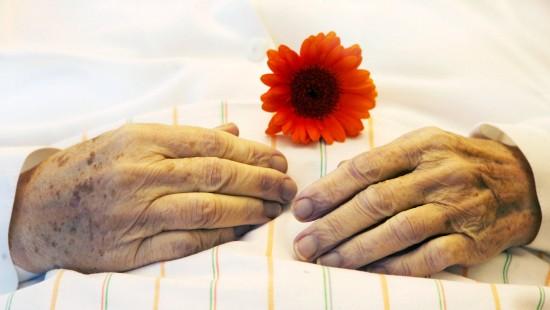 Palliativmedizin bietet Alternativen zur Sterbehilfe