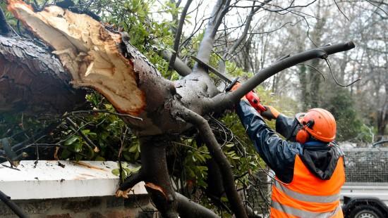 Schäden durch Sturmtief