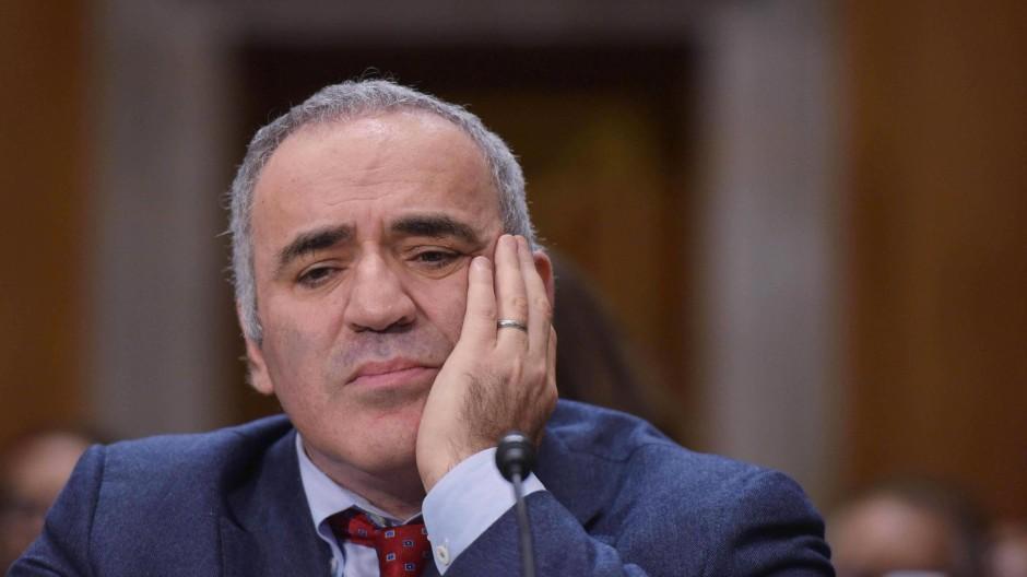 """Kreml-Kritiker Kasparow: """"Putin ist ein Krebsgeschwür"""""""