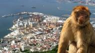 Der reiche Nachbar Gibraltar