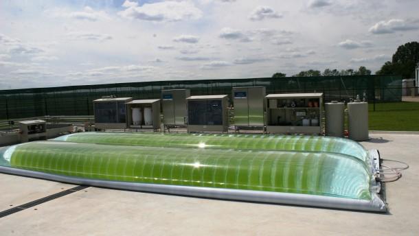 Vom Wasserbett  zum Biosprit