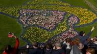 Blumenmeer für van Gogh