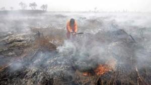 Brandrodung sorgt für dicke Luft in Südostasien