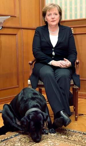 Putin Hund Merkel