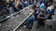 Ungarns Grenzzaun spaltet das Land